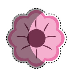 Pink beauty flower decoration vector