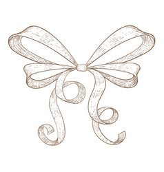Ribbon bow hand drawn sketch vector