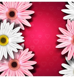 Romantic background with gerberas vector image