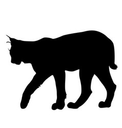 Silhouette of the lynx on a white background vector