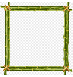 bamboo steam frame isolated on transparent vector image