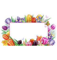 banner with multicolor spring flowers vector image