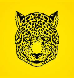 Cheetah face tiger head panthera front view face vector