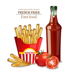 french fries and ketchup bottle realistic vector image