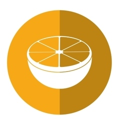 Sliced orange juicy fruit yellow circle shadow vector
