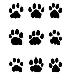 Footprints lions vector