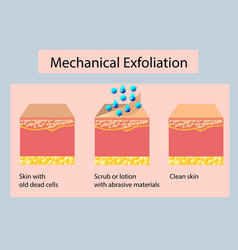 Mechanical exfoliation or peeling vector