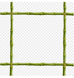 Realistic bamboo poles or sticks border with vector