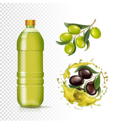 realistic green and black olives and oil in bottle vector image