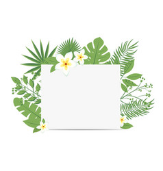 tropical flyer with palm leaves and exotic flowers vector image