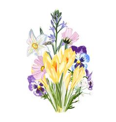 Yellow crocus flowers bouquet with garden herbs vector