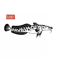 Burbot black and white vector