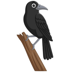 cartoon crow standing on a tree branch vector image