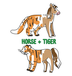 Childish tiger and horse animal splice vector