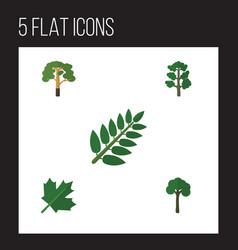 Flat icon ecology set of oaken acacia leaf wood vector