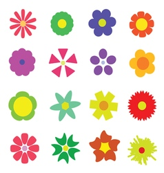 flower colorful vector image