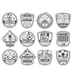 football or soccer sport heraldic icons vector image