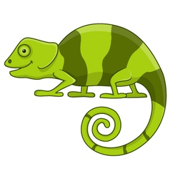 Funny chameleon cartoon vector