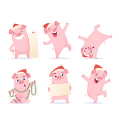 New year cartoon pig funny 2019 cute characters vector