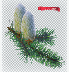 pine cones christmas decoration 3d realistic icon vector image