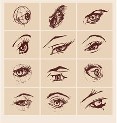 Set of female eyes vector