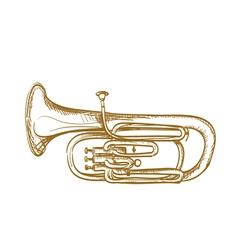 baritone horn vector image