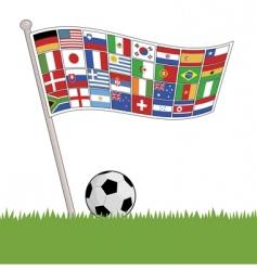 football flags vector image