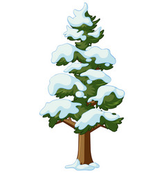 Pine tree covers with snow vector