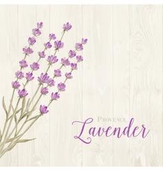 Laveder over wooden panels vector image