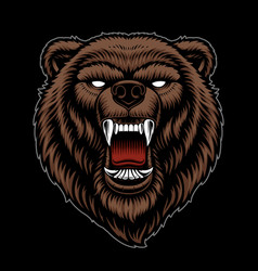 A colorful a grizzly head vector
