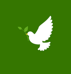 dove and olive branch icon in flat style vector image