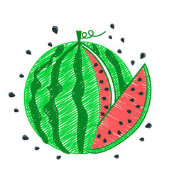 drawing watermelon icon piece vector image