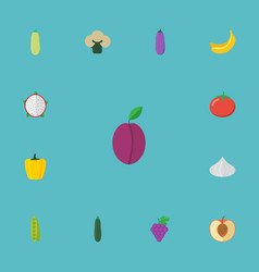 flat icons cluster bean apricot and other vector image