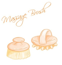 hand drawn of isolated massage brushes vector image