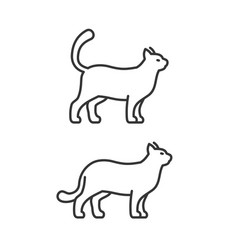 walking cat icons on white background line style vector image