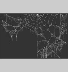 large white torn spider web on black background vector image vector image
