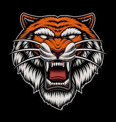 a colorful tiger head vector image