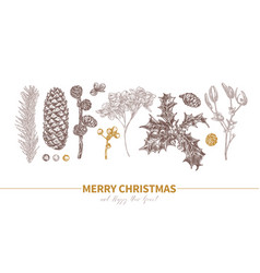 card design merry christmas vector image