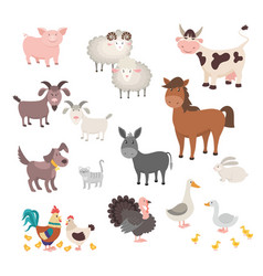 farm animals set isolated homes animal pig vector image