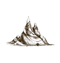 peak or summit hand drawn with contour lines on vector image