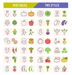 Set of vegetables on white vector