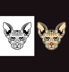 sphynx cat head two styles vector image