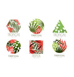 tropical logo design collection badges various vector image