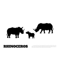 black silhouette of rhino on white background vector image