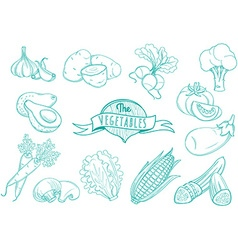 Outline hand drawn vegetable set flat style thin vector image vector image