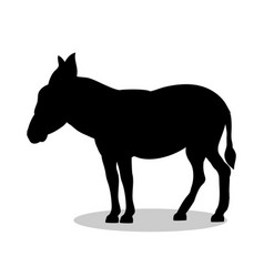 donkey farm mammal black silhouette animal vector image