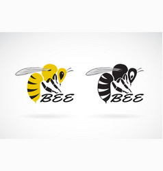 bee design on white background insect animals vector image