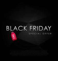 black friday special offer inscription design vector image