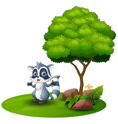 Cartoon raccoon under a tree on a white background vector