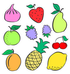 Doodle of fruit colorful various collection vector